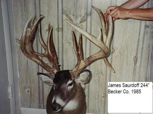James Saurdiff